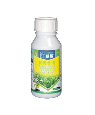 玉米苗前产品—玉麒麟